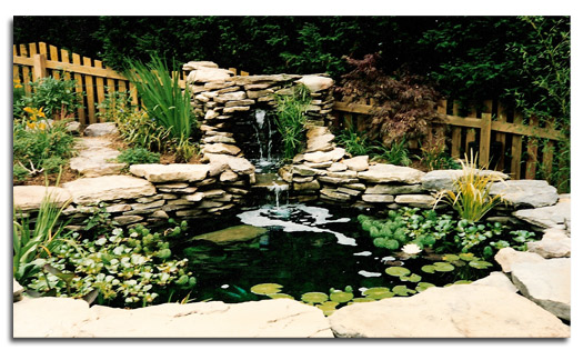 Pond Design and Installation Harford County MD